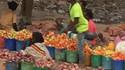 """Tradecorp Europa, partner del proyecto """"Semillas para Alimentar Etiopía"""""""