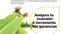 ¿Cómo incrementar la efectividad de tus cultivos?