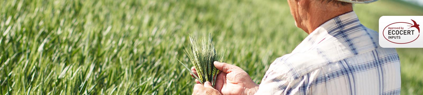 Productos Tradecorp, aprobados para Agricultura Ecológica